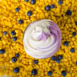 Blueberry Corn Soft Serve Image