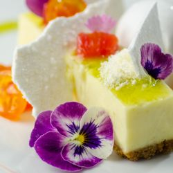 Citrus Cheesecake Image
