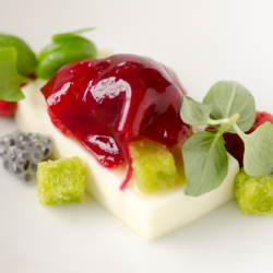 Yogurt Pannacotta Image