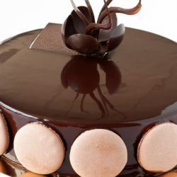 Dark Chocolate Hazelnut Cookie Crunch Gelato Cake Image