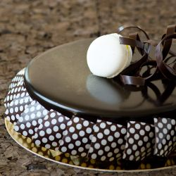 Chocolate Entremet Image