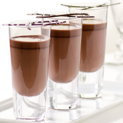 Chocolate Pannacotta Image