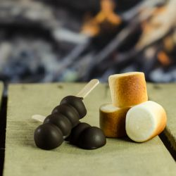 Chocolate-Dipped Toasted Marshmallow Frozen Pops (Prep Time: 15min.) Image