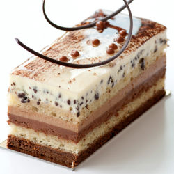 Three Chocolates Entremet
