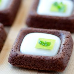 Chocolate Mint Tea Cookies Image