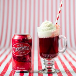 Vanilla Cheerwine Float Image