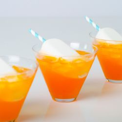 Vanilla Frozen Pops in Orange Soda Image